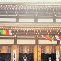 成田山-4 新勝寺b 大本堂あたり〈本尊-不動明王像〉☆聖徳太子堂 世界平和を願って建立