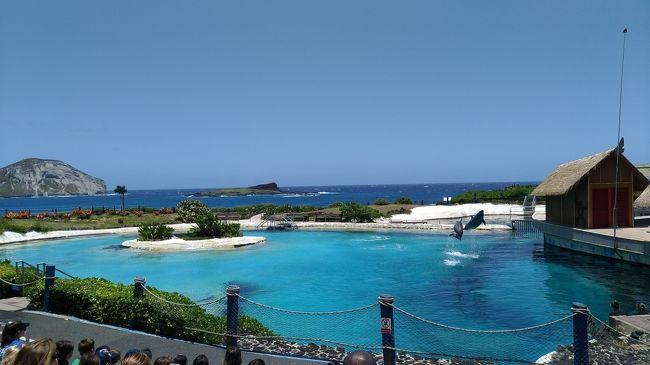 何十年も恋焦がれていたハワイへ<br />夫婦・小4息子と家族旅行してきました。<br /><br />3日目です。