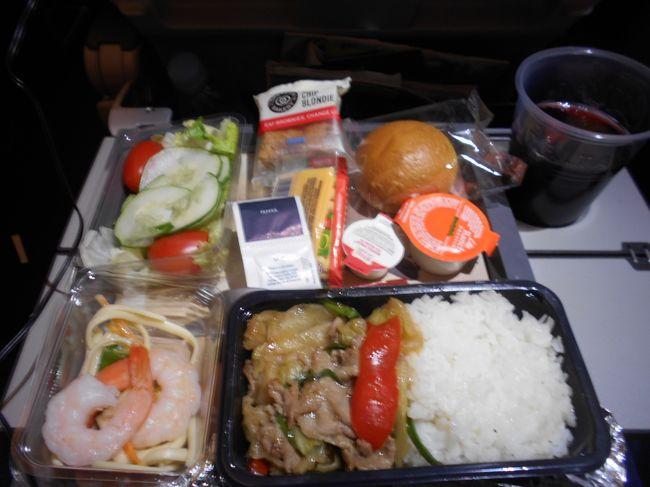 とうとうアメリカ滞在も終わる。友人等とユダヤレストランで夕食。早目に家を出て空港近くのダイナ-で朝食、空港にはかなり早めに到着。