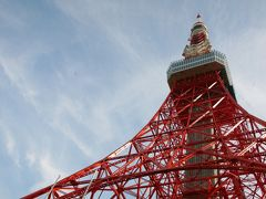 おのぼりさん(人生初の東京タワー)