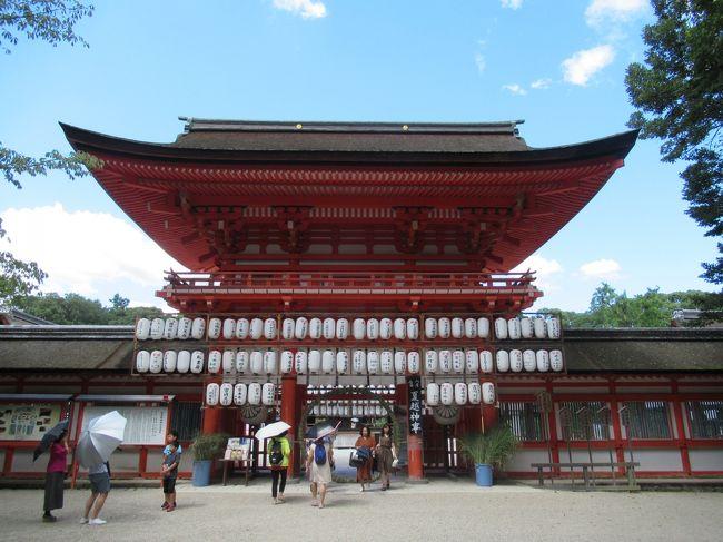 下鴨神社で夏越神事が開催中です。<br />茅野輪をくぐり、お祓いをして境内へ入ります。<br />また、糺の森の参道に灯篭を置いており、イベント開催などもあるようです。<br /><br />下鴨神社 http://www.shimogamo-jinja.or.jp/ <br /><br />京都の福祉観光 https://sites.google.com/site/wonderfulcare1/ <br /><br />