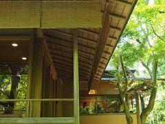 見上げれば空一面の青もみじ☆初夏の鎌倉  一条恵観山荘を訪ねて