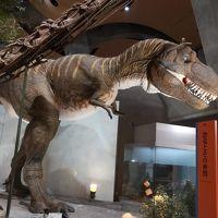 3世代で行く夏のグンマー 磯部温泉 群馬県立自然史博物館②