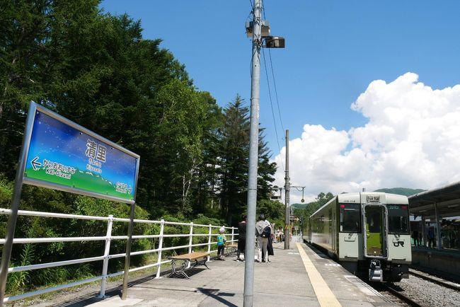 長野県小諸から山梨県小渕沢を結ぶ日本一の高原鉄道JR小海線<br />かつてこの小海線に通称ポニーと呼ばれていたC56と言う蒸気機関車が走っていた<br /><br />小学校6年の夏の<br />ある朝<br />隣の部屋に寝ている祖父が毎朝聞いているラジオ、確かTBSのおはよう片山竜二です<br />なにやらラジオで中継をしている<br /><br />日本一の高原鉄道小海線の蒸気機関車C56からのライブだった<br />シュッツ、シュッツ、シュッツ、シュッツと言うなんとも歯切れのいい蒸気音・・<br /><br /><br />わ~、凄いなっ<br />見たい<br />行きたい<br />行こう!!<br /><br />そして11月3日文化の日<br />上野6時16分発の急行妙高で3時間かけ小諸へ<br />日帰りの初めてのひとり旅<br />それから何回通ったかな<br /><br />そんな小海線へ久しぶりに行ってみよう<br /><br />色々な縁がある<br />現佐久市の中込<br />当時は小海線の基地、中込機関区があった<br />その駅前に、あるカメラ店がある<br />その代表が一昨年六本木ミッドタウンフジフィルムスクエアで素晴らしい写真展を開いた<br />「走れ 小海線」<br />実は、奥さん共々に長い旧知の友だ<br />その彼を訪ねての今回<br /><br />走れ!小海線よ<br /><br /><br />
