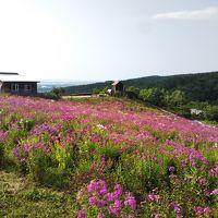 2019夏 北海道・道東オホーツクへ家族旅行