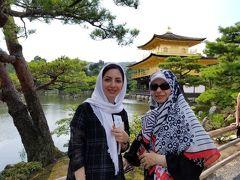 ベーシック京都観光