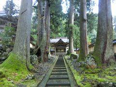 初福井の旅。福井にはすごい遺跡があるぞ。東尋坊、永平寺、恐竜博物館編②