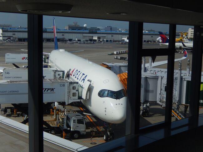 2018年夏休みはデルタ航空の直行便でデトロイトに向かいました。A350はとてもきれいで快適なシート、かつデルタ航空は米系エアラインの中でもエコノミークラスのサービスクオリティが極めて高いと思いました。但しキャビンクルーの皆様は人によってバラバラで丁寧というよりもカジュアルフレンドリーな人に当たればラッキー、やる気のない人に当たると極めて不快というくじ引き的エアラインでございました。(笑)