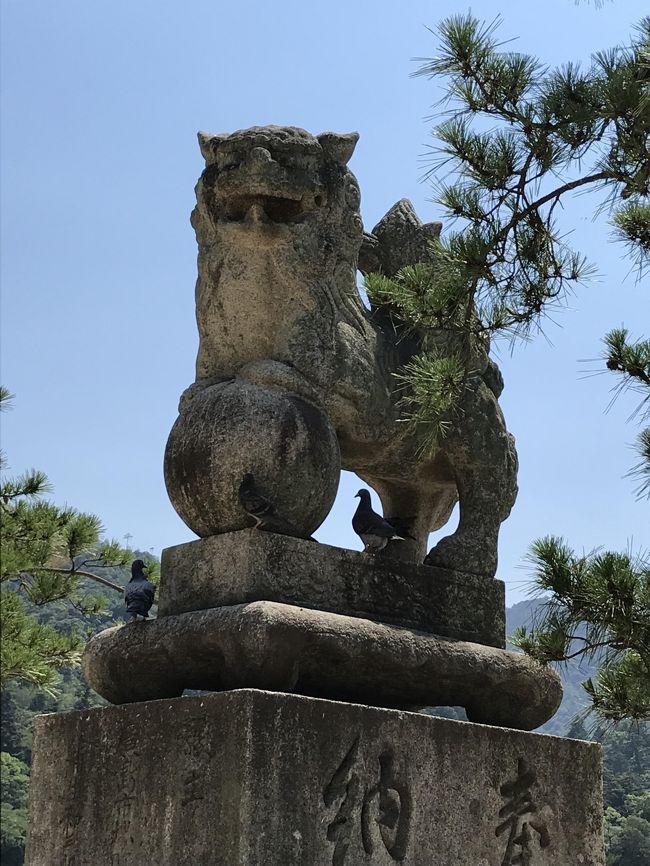 猛暑の宮島は外国人の方が多かった。落ち着く神社。弥山に行けなかったのが残念。