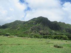 今年のハワイは寂しいハワイ…ロングステイではなく、三世代利用でもないハワイ・・・