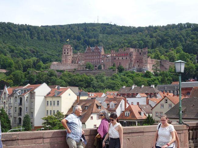 7/15(月)より10泊12日で、おねーさん(義姉)希望のスイスとドイツへ。<br />私はスイス(9度目)、ドイツ(6度目)経験ありなので、初ヨーロッパのおねーさんに喜んでもらえるように、いろいろと計画!<br />すごく良いお天気に恵まれて(二人の日頃の心掛けだな!笑)、素晴らしい気分の旅になりました♪<br /><br />◆7日目、ベルンからドイツへ入り、大学の街・ハイデルベルクを観光し、フランクフルトへ(2泊)。<br />8日目、ブドウ畑の美しいリューデスハイムを散策後、ライン川クルーズ、世界遺産・ケルン大聖堂を楽しみます。<br /><br /> 7/15(月)1日目 羽田12:30発⇒ミュンヘン17:20着<br />         ミュンヘン18:35発⇒チューリッヒ19:30着<br /> 7/16(火)2日目 ユングフラウヨッホ<br /> 7/17(水)3日目 フィルスト、ブリエンツ湖、ロートホルン<br /> 7/18(木)4日目 ルツェルン<br /> 7/19(金)5日目 シーニゲ・プラッテ、ミューレン、トリュンメルバッハの滝<br /> 7/20(土)6日目 フィルスト、ベルン<br />●7/21(日)7日目 ハイデルベルク<br />●7/22(月)8日目 リューデスハイム、ライン川クルーズ、ケルン<br /> 7/23(火)9日目 ミュンヘン<br /> 7/24(水)10日目 ノイシュバンシュタイン城とヴィース教会ツアー<br /> 7/25(木)11日目 ザルツブルク<br />           ミュンヘン21:25発⇒<br /> 7/26(金)12日目 羽田15:50着<br /><br />■飛行機:ANA(約18万円)<br /><br />■交通チケット:1人 約6万円(2つのパス利用で)<br />        ユーレイル・セレクトパス(2等)7日間<br />        ユングフラウ・トラベルパス 5日間<br /><br />■ホテル(1部屋の料金、いずれも朝食付き、市税込み)<br />・モーベンピック ホテル(チューリッヒ空港 1泊 3.1万円)<br />・ダービー ホテル(グリンデルワルト 4泊 12.8万円)<br />・ホテル サボイ(ベルン 1泊 2.7万円)<br />・メルキュール ホテル(フランクフルト 2泊 3.5万円)<br />・イーデン ホテル ヴォルフ(ミュンヘン 2泊 5.5万円)<br /><br />参考:1スイスフラン(CHF)=112円<br />   1ユーロ=125円