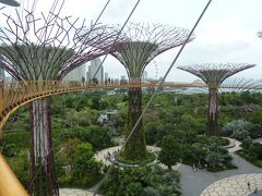シニアトラベラ― 思い出の旅シリーズ シンガポール満喫の旅④