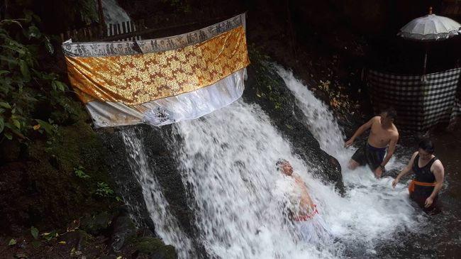 ダラムピンギットスバトゥ寺院で沐浴をしてきました。<br />自然豊かな場所にひっそりと佇む沐浴場。<br />観光客は少ないです。バリ人の方が多かったです。<br /><br />階段を降りて行き、祈りを捧げてから沐浴をします。 <br />滝の様な聖水。勢いは凄く、水量も多いのです。<br />でも岩にもたれる様に立ち、沐浴が出来るので、水の勢いに押し出される事なく沐浴が出来ます。<br /><br />沐浴場にはロッカーがありますが、オープンエアーで、着替える場所もオープンエアー。男女別はなく、その時沐浴をする人々の暗黙の了解?で自然と男女別に分かれました(笑)<br /><br />私達はお昼前に行ったのですが、ロッカー係の人がまだ出勤してなくて、残念ながらロッカーは使えなかったです。沐浴に来ていたバリ人の方が「荷物見ていてあげるから、沐浴しておいで」と言ってくださり、お言葉に甘えてお願いしました。<br /><br />お祈りで願い事をして、沐浴で心身ともに清められ、スッキリとした気分になりました。<br />水は冷たかったですが、不思議と凍える事はなく、逆に身体の内側からポカポカと暖かい。そんな不思議な感覚を覚えました。<br /><br />最後にお願い事を聞いていただいた神さまにお礼の祈りを捧げました。<br />本当に願いが叶いますように!