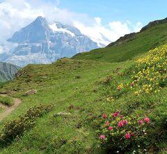 団塊夫婦の2019年アルプス絶景ドライブ&ハイキングー(9)スイスアルプスを歩く(その2:フィルスト~バッハアルプゼー~ボルト)