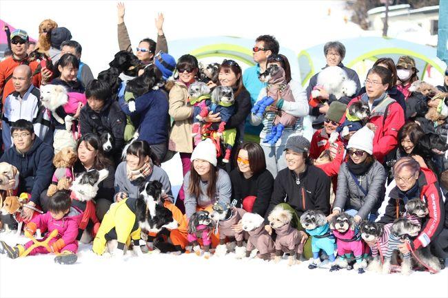 年2回、冬と夏にある白馬ワンワン運動会に参加してきました。<br />このワンワン運動会はワンコと一緒に運動をするのがメインなので、ワンコと触れ合うのが好きな人はオススメです。 <br />