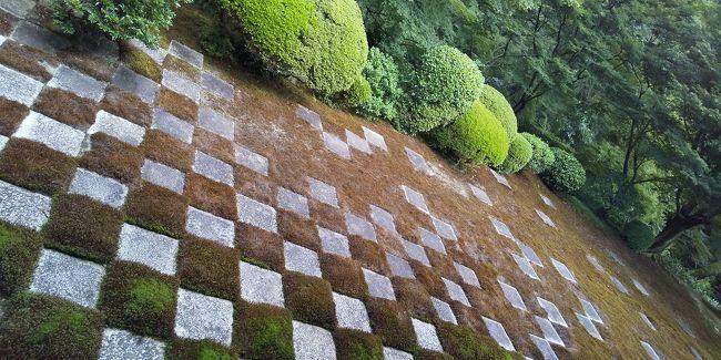 お盆に子供たちを実家に送り込み、<br />気分転換に京都に行って来ました。