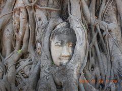 amazing THAILAND! (27)木の根に覆われた仏頭があるワット・マハタートへ・・・