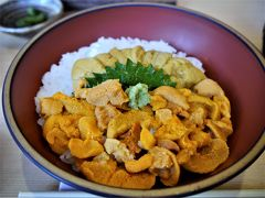 ♪北へ~、南へ~、東へ、西へ~~♪うに丼を食べる為に行きました、北海道旅!完