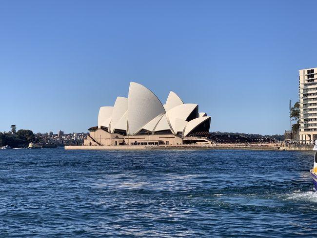 夏休みに約1週間かけてオーストラリアを旅行しました。<br />前半はシドニーに宿泊して市内とブルーマウンテン観光。<br />後半はウルルに移動してエアーズロック周辺を散策しました。<br />こちらは前半編です。