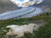 スイスアルプス2018夏:08/17 ヒョウが降る氷河沿いのトレイルで思い出作り