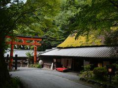 台風には勝てず、仕方なく京都いこう