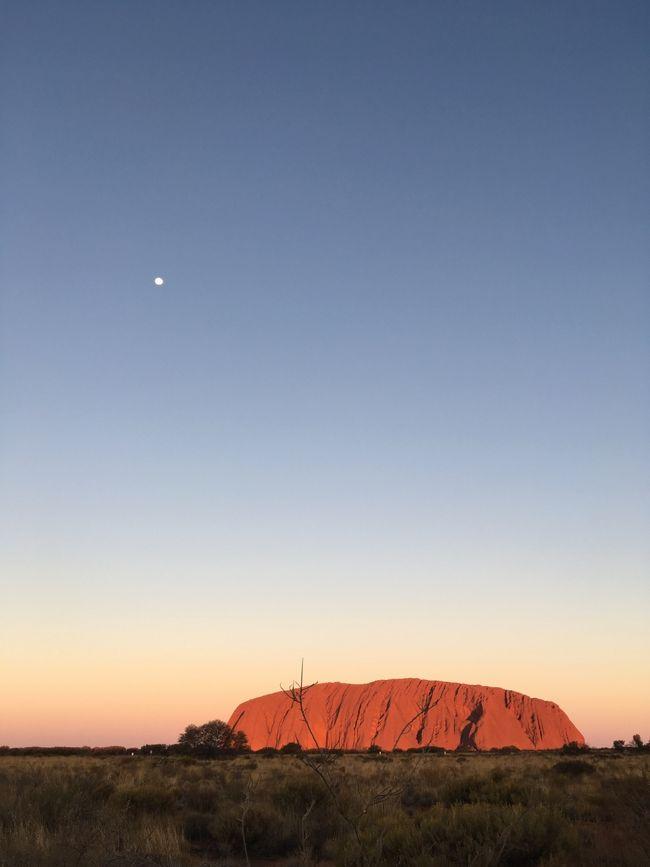 恐らく物心ついた頃から外国として認識していた最初の国がオーストラリア。<br /><br />両親が新婚旅行で行ったウルルの写真を見てからだと思う。<br /><br />いつからか、両親を連れてまたウルルに行くことが一番の親孝行だと思って、今回の旅行まで行くことがなかったオーストラリア。<br /><br />ウルル登頂が終わってしまう日を目前に、両親と3人で駆け込んで行ってきました。<br />2019年夏休み オーストラリア旅行!<br /><br />夢に見たウルルを目前にして、本当に涙出ました。<br />登頂は叶わず両親は残念そうでしたが、<br />こればかりは仕方がないですね。<br /><br />以下、旅程です。<br /><br />・概要<br />4泊7日<br />シドニー2泊<br />ウルル2泊<br /><br />・フライト<br />羽田?シドニーはANA<br />シドニー?ウルルはVirgin Australia<br /><br />・ホテル<br />シドニー The Westin Sydney<br />ウルル Outback Pioneer Hotel<br /><br />全て個人手配です。<br /><br />8/9(金) 22:30 HND NH879<br />8/10(土) 08:55 SYD シドニー観光<br />8/11(日) ブルーマウンテンズ観光<br /><br />---旅行記ここから---<br />8/12(月) 10:05 SYD VA1627<br />同日 13:15 AYQ<br />8/13(火) ウルル観光<br />8/14(水) 13:50 AYQ VA1628<br />同日 17:20 SYD<br />同日 20:55 SYD NH880<br />8/15(木) 05:25 HND<br />---ここまで---<br /><br />今回の旅行記はウルル編です。