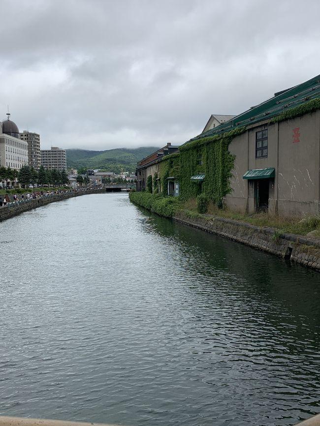 夏休みに友人から誘われた伊東。<br />姉夫婦から誘われた北海道。<br /><br />どっちも行きたーい&#10071;️<br /><br />どっちも行ったよー&#10071;️<br /><br />北海道2泊3日へ&#9992;️<br />2日目は朝の札幌場外市場から小樽、<br />そしてまたまた大通り公園のビアガーデンへ