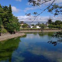真夏の奈良大和四寺めぐり