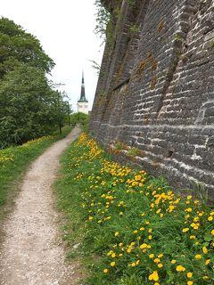 海外一人旅第3弾はラトビア&エストニア☆足かけ3年のバルト三国旅完結編(8)トームペアの丘と垣間見たローカル風景