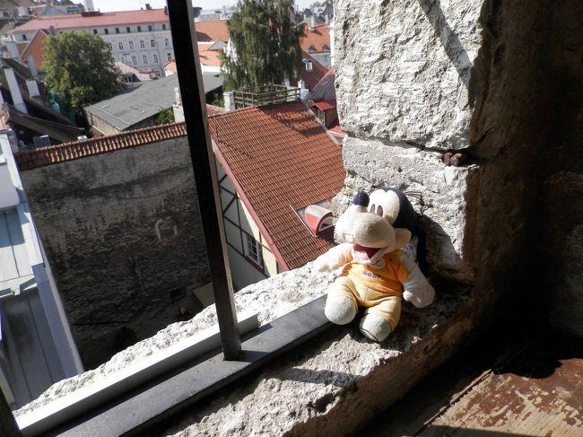 グーちゃんだよ。<br />なべなべと些細な事で喧嘩したグーちゃん!<br />河合奈保子の「けんかをやめて」の<br />声を聞き、無事に仲直り!<br />仲良くタリンの城壁の視察に向かったよ。<br />素晴らしい城壁なの。<br />そして、今度は城壁でカモメさんに<br />絡み始めたグーちゃん・・・。<br />忖度(そんたく)しろって!<br />