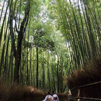 真夏の京都 2日目 後半