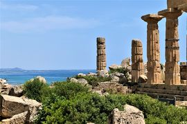 魅惑のシチリア×プーリア♪ Vol.185 ☆セリヌンテ:古代ギリシア遺跡 C神殿と周囲のパノラマ♪