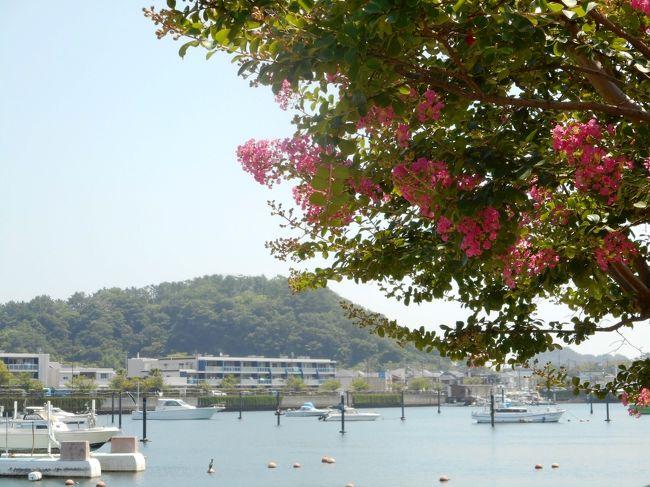 夏らしく、海辺に行くことにした。以前より行ってみたいと思っていた、横浜の金沢に行くことにしたが、久しぶりの金沢八景は駅が大きく変わっていた。<br /> 駅のすぐそばにある平潟湾沿いを歩き、海浜公園の砂浜を見る。炎天下ではあるが、海辺は潮風が涼しげで心地よい。<br /> 今回もメインは電車の旅で、京急の快速特急と、横浜シーサイドラインに乗るのが主な目的。シーズンらしく列車は混み、海もにぎわっていた。<br /> 詳細は写真参照。