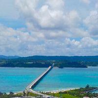 沖縄ブルー最新情報