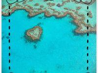 ε(・●・)з 大満喫真冬のオーストラリア 【3】セレブ気分で、グレートバリアリーフを遊覧飛行。その後ホワイトビーチでシャンパン!