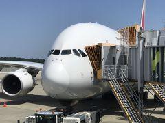 アシアナ航空搭乗記 成田⇔タシュケント往復と仁川空港ラウンジ
