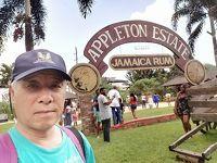 セントエリザベス アップルトン工場見学 (Appleton Rum Factory Tour, St. Elizabeth)