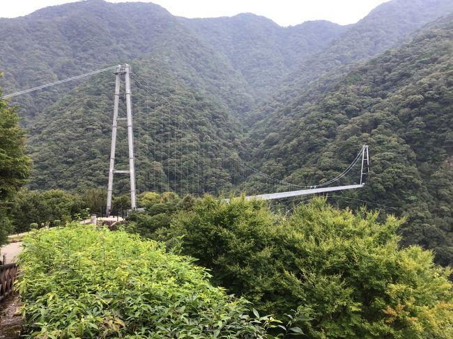 綾の照葉大吊り橋は昭和59年に架橋された高さ142m、長さ250m、遊歩道としては世界規模の高さです。遊歩道を歩いて照葉樹林を観賞し森林浴をしながら散策されるのも良いかと………。山桜が咲くころ、紅葉の時期にあわせてくるのも良いかと思います。今回で2回目の訪問でその頃はまだ4トラをしてない時でもあって写真は全くなかったので久しぶりに行ってきました。