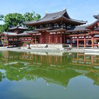 2019夏旅の前半は、1泊2日で高野山〜なら燈花会〜宇治平等院〜信楽へ(2日目)