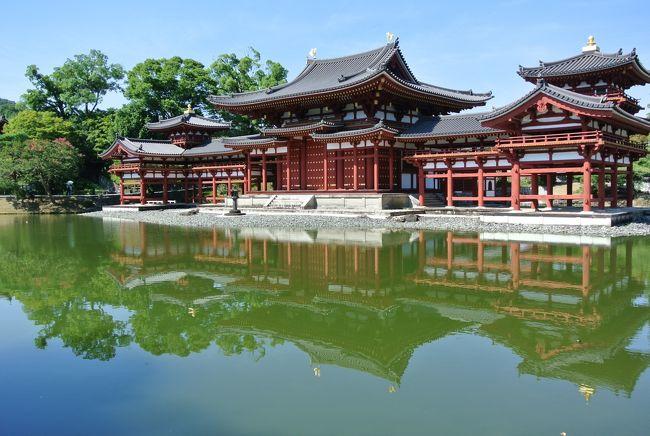 2019年の夏休みは7日間。本来なら東北へ行く予定でしたが、急きょ休みの中3日間に外せない用事ができたため、連続で出かけられるのは2日間のみ。それならということで前半の2日間は高野山方面へ、そして後半の2日間は富山方面へ出掛けてきました。<br />前半は和歌山・奈良・京都・滋賀の4県をぐるっと広く浅く・・巡る旅。<br />1日目は高野山と奈良。そして2日目は猛暑の中、平等院へ。午後は、帰り道の途中でインターを降りて信楽へ。信楽は、次回の朝ドラ「スカーレット」の舞台ということをトラベラーさんに教えていただき「どんなところかな?」と思い、フライングして訪れました。<br />1泊2日の4県をまたぐ旅は、暑さの中でも充実した旅になりました。