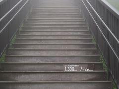 日光-3 霧降高原b 天空回廊/霧霞のなか ~てっぺん/Top ☆1445段+小丸山展望台上り