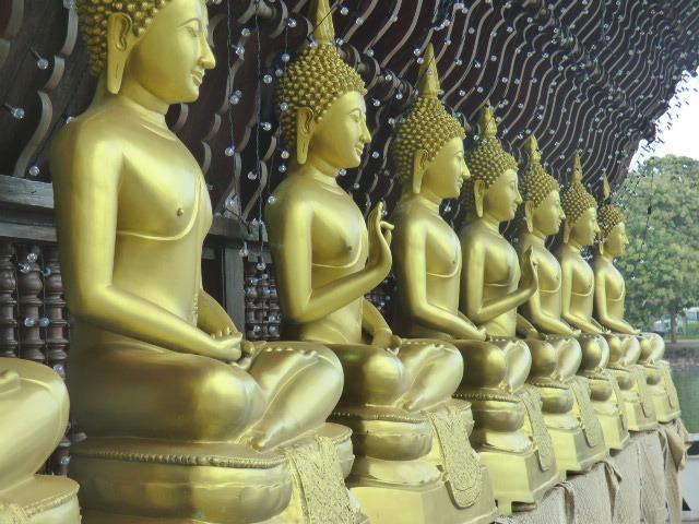 このお盆休みは、6泊7日(ホテル3泊+機内3泊)でタイのバンコクとスリランカのコロンボへ行ってきました。<br /><br />色んな事件が起きました。<br /><br />スリランカではぼったくられました(笑)←(涙)ではない!<br /><br />タイってこんなに面白いところだったっけ?<br /><br />スリランカってまるでインドじゃん!<br /><br />ぼったくりくそじじい!おぼえとけ!絶対仕返しに行ってやっからな!<br /><br />ワクワクが止まらない東南アジアの旅。<br /><br /><br />※じいさんのチャターを終えて帰って来たものの、シーママラカヤ寺院へ行っていない事に気づき、もう一度出かける事にしました。<br /><br />