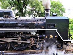【2019年7月】3歳息子と18きっぷ旅:SLばんえつ物語で咲花温泉、そして新潟へ