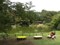 通年公開が検討されているという日本庭園