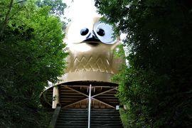 フクロウの神社