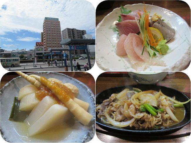 弘前でのお泊りはホテルルートイン弘前駅前。その名の通り駅の真ん前で便利です。<br />夕食はホテルで教えてもらった近くの居酒屋でおいしい郷土料理のご馳走を。<br /><br />刺身、生姜味噌おでん、十和田バラ焼き等々。おなかいっぱい!<br />