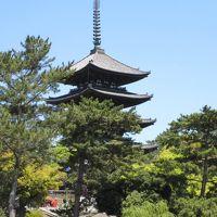 平成最後の月に訪れ、令和に記す紀州・大和路の旅 6日目その2 〜 興福寺とその周辺 〜