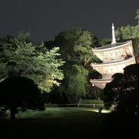 遅く起きた土曜日は...神楽坂から椿山荘の東京散歩 予算は3,680円