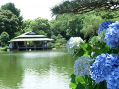 清澄庭園♪~2019~