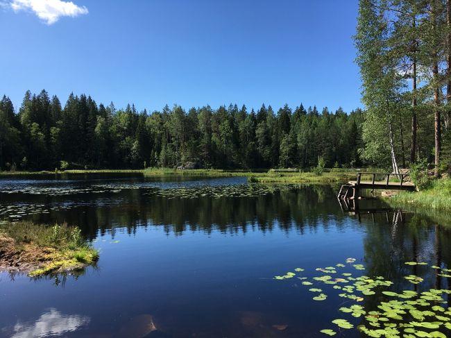 今年の夏休みはずっと行きたい国リストにあったリトアニアへ。ここ2-3年行けてなかったので、久々にヘルシンキ旅行を一緒にアレンジしました。ヘルシンキはもう何回も来ているので、森でブルーベリー摘みとマリメッコでお買い物、そして久々にフェリーでエストニアのタリンに行ってみました。<br />ヘルシンキではマーケット広場でおばあちゃんたちがマリメッコの生地で小物を作って売っているものを楽しみにしていたのに、久々に行ったら区画整理されてしまっていて、おばあちゃんたちが消えてしまいましたのでがっかりしました。それでもヘルシンキは素敵なものがたくさん売っていて、エストニアとともに散財することになってしまいました。